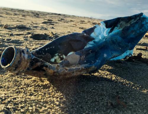 Inquinamento dei mari: Beach litter e materie plastiche